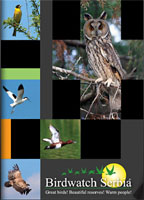 Birdwatching in Serbia Catalogue